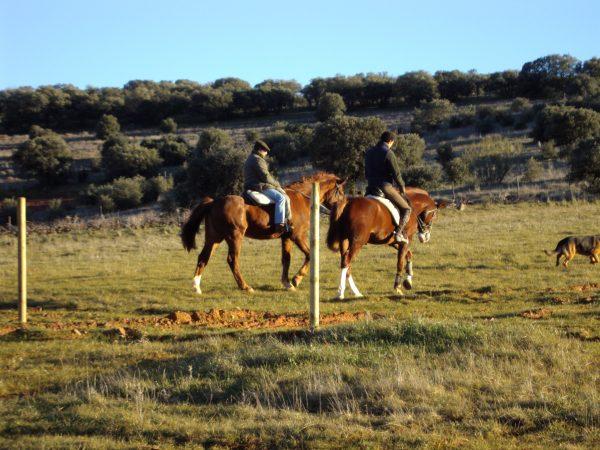 Paseo a Caballo en Finca Las Agrupadas